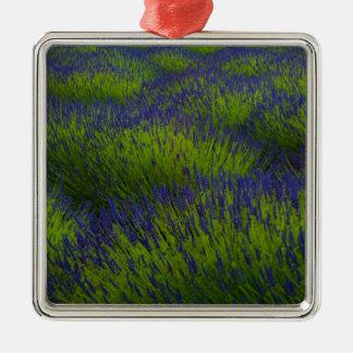 L1029042.jpg Square Metal Christmas Ornament