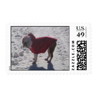 l_d3000b414acc416b620e24776a533e18[1] stamps