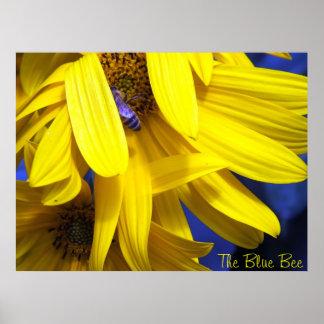 La abeja azul en el poster amarillo del girasol