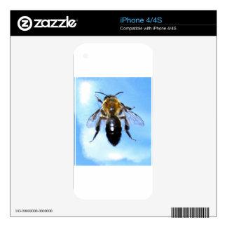 La abeja de la miel, los regalos de la fauna de la skins para iPhone 4S