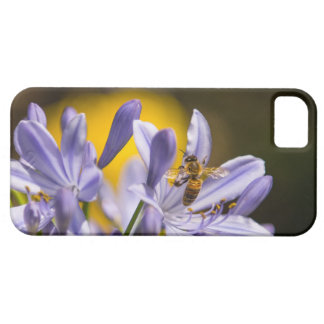 La abeja en púrpura florece la caja de iPhone5 Bar iPhone 5 Case-Mate Carcasas