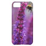 ¡La abeja está volando en una flor púrpura!