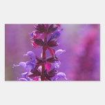 ¡La abeja está volando en una flor púrpura! Pegatina Rectangular