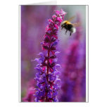 ¡La abeja está volando en una flor púrpura! Tarjetas