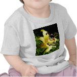 La abeja grande tiene gusto de la camisa del niño