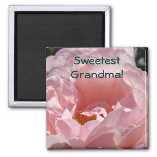 ¡La abuela más dulce! flor color de rosa rosada de Imán Cuadrado