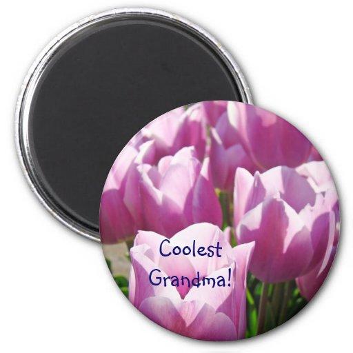 ¡La abuela más fresca! tulipanes púrpuras Imán Redondo 5 Cm