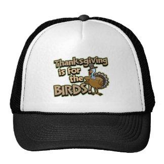 La acción de gracias está para el gorra del camion