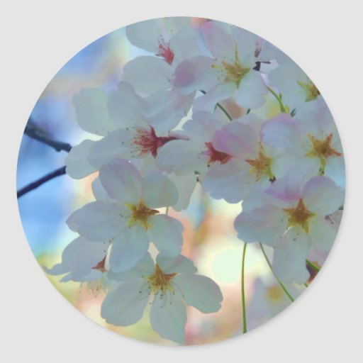 La acuarela florece pegatina