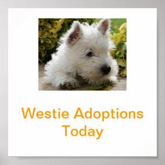 La adopción de Terrier blanco de montaña del oeste Póster