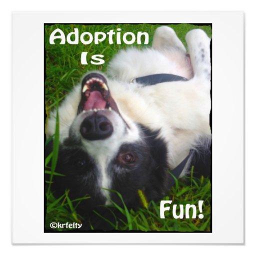 ¡La adopción es diversión! Fotografía