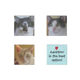 ¡La adopción es la mejor opción! Imán De Piedra