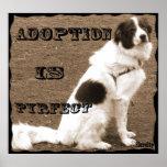 La adopción es Pyrfect-Jaspe Impresiones