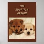 ¿La adopción será su primera opción?? Posters