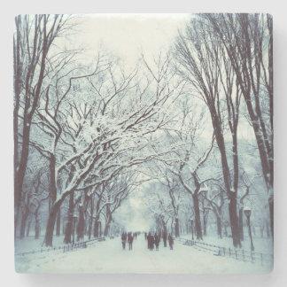 La alameda del Central Park en invierno Posavasos De Piedra