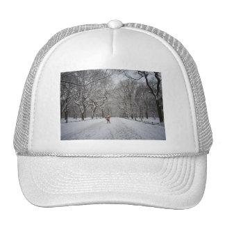La alameda en invierno, Central Park, New York Gorras