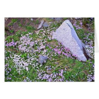 La alfombra de Wildflowers rosados acerca a las fl Tarjeta De Felicitación