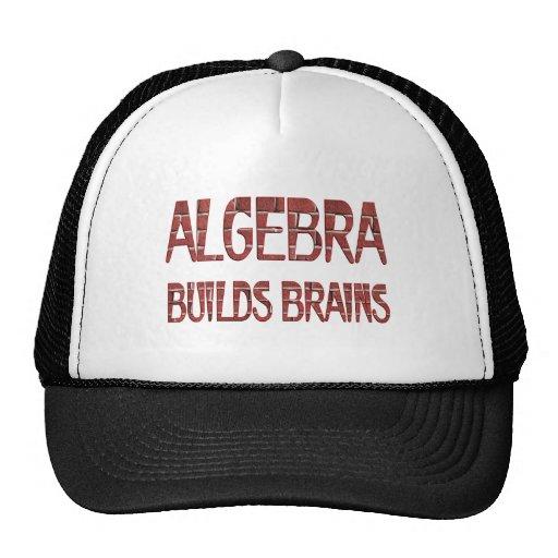 La álgebra construye cerebros gorras
