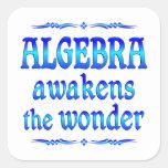 La álgebra despierta colcomanias cuadradass