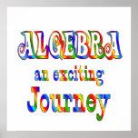 La ÁLGEBRA es emocionante - comenzando en $11,80 Poster
