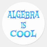 La álgebra es fresca pegatina redonda