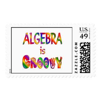 La álgebra es maravillosa envio