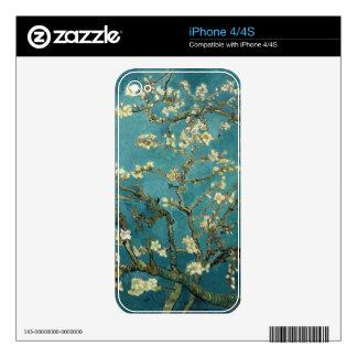 La almendra florece piel del iPhone 4/4S iPhone 4 Calcomanías