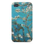 La almendra ramifica en la floración, San Remy, c. iPhone 4 Coberturas