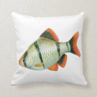 La almohada de los pescados de Barb del tigre