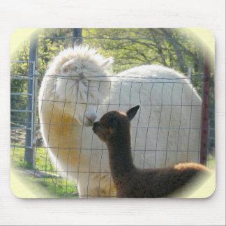 La alpaca besa Mousepad Alfombrilla De Ratón