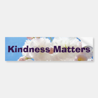 La amabilidad importa inspiración de la clase de pegatina para auto
