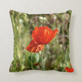 La amapola coloca la almohada roja de los campos