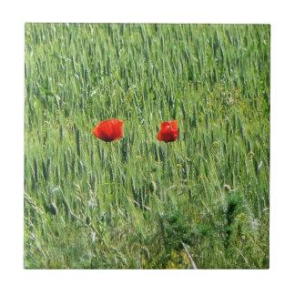 la amapola coloca las flores Rumania salvaje del r Azulejo Cuadrado Pequeño