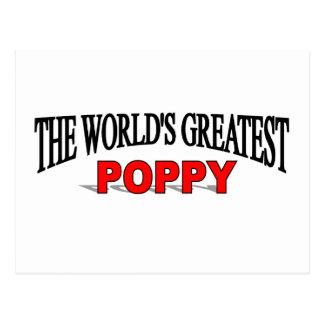 La amapola más grande del mundo postal