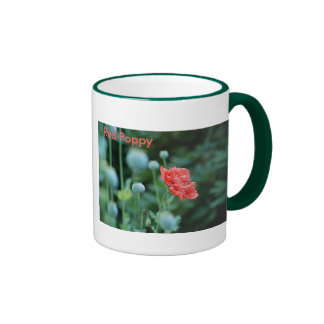 La amapola roja, en Flandes coloca la taza