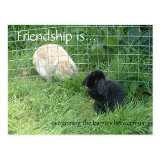 La amistad es…, superando las barreras en medio postales