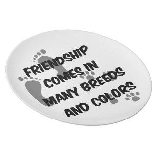 La amistad viene en muchos cría y los colores platos de comidas
