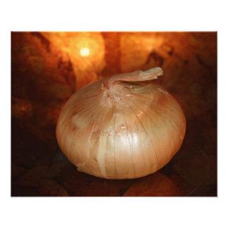 La ampliación de cobre de la foto de la cebolla cojinete