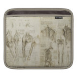 La anatomía de da Vinci Mangas De iPad