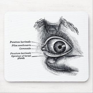 La anatomía del gris - globo del ojo tapete de ratón