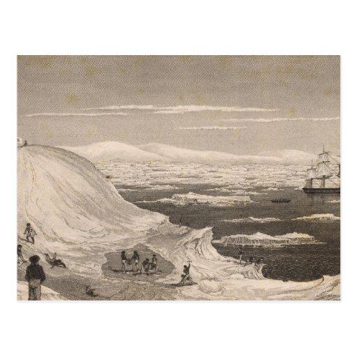 La Antártida 2 Tarjetas Postales