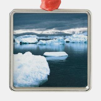 La Antártida congelada invierno Adornos De Navidad