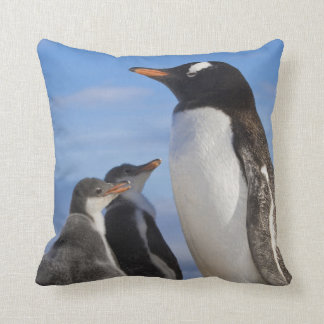 La Antártida, ensenada de Neko (puerto). Pingüino  Cojín