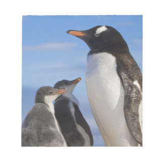 La Antártida, ensenada de Neko (puerto). Pingüino  Libretas Para Notas