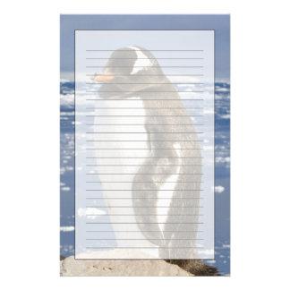 La Antártida, ensenada de Neko (puerto). Pingüino  Papeleria De Diseño