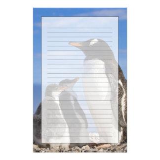 La Antártida, ensenada de Neko (puerto). Pingüino  Papelería Personalizada