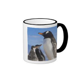 La Antártida, ensenada de Neko (puerto). Pingüino Taza De Dos Colores
