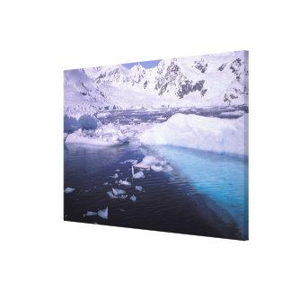 La Antártida Expedición a través de icescapes Impresiones En Lona