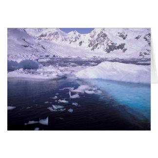 La Antártida. Expedición a través de icescapes Tarjeta De Felicitación
