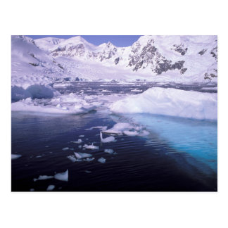 La Antártida. Expedición a través de icescapes Tarjeta Postal